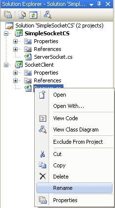 C# Simple Client Server Socket Program Example - invoking the Rename menu to rename the source file