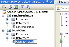 C# Simple Client Server Socket Program Example - renaming the source file