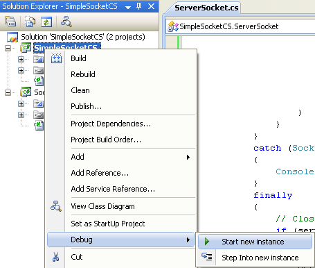 C# Simple Server Socket Program Example - running the server project independently