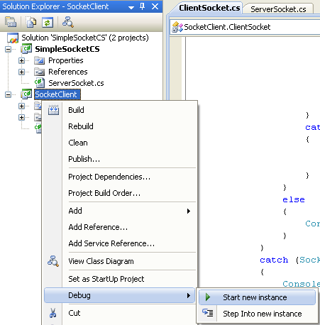C# Simple Client Server Socket Program Example - running the client project independently