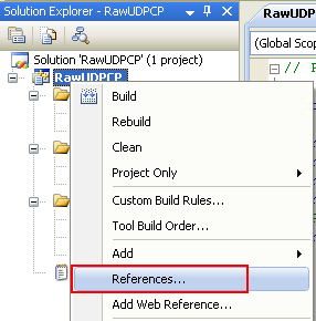 C++ Raw UDP Socket Program Example - Invoking the project's References page