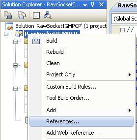 C++ Raw Socket IGMP Program Example - invoking the References page
