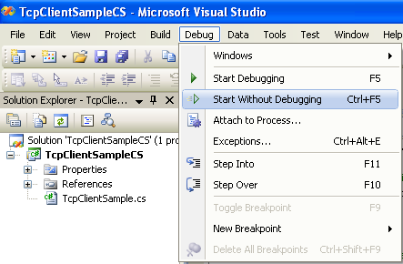 C# TCP Client Program Example - running the project