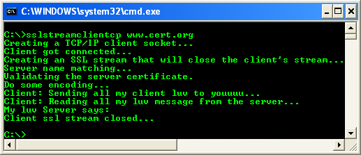 C++ SSLStream Client Example - output sample against the https server