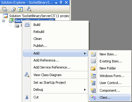 Adding C# Binary Server Socket Program Example - adding a new item into existing project