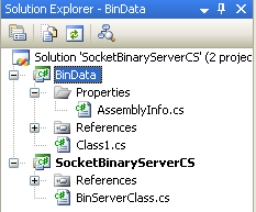 C# Binary Socket Server Program Example - several projects in one solution