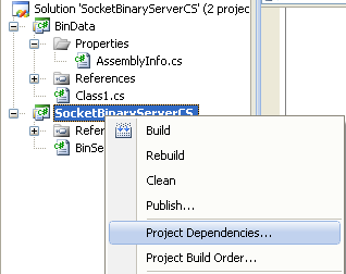 C# Binary Socket Server Program Example - viewing the project dependencies