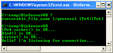 VB .NET: The Binary Server Socket Project - running the project from the command line using default argument values