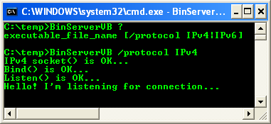 VB .NET: Testing the Whole Project, Client and Server - running the server program for Ipv4 protocol
